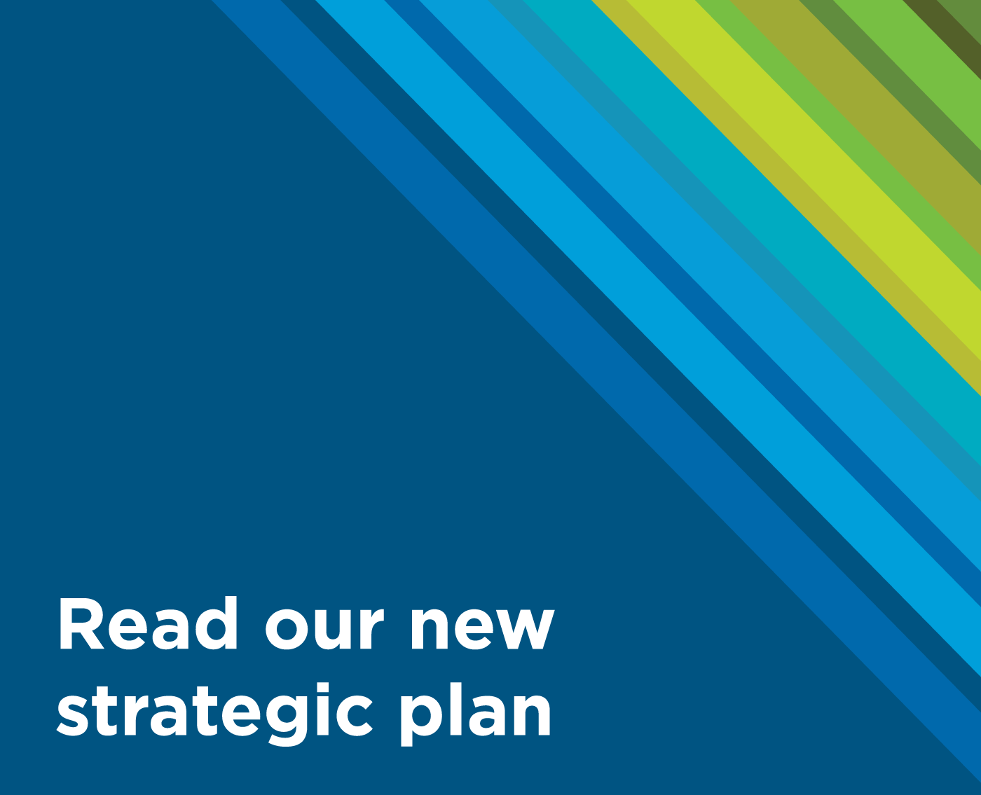 Read our new Strategic Plan